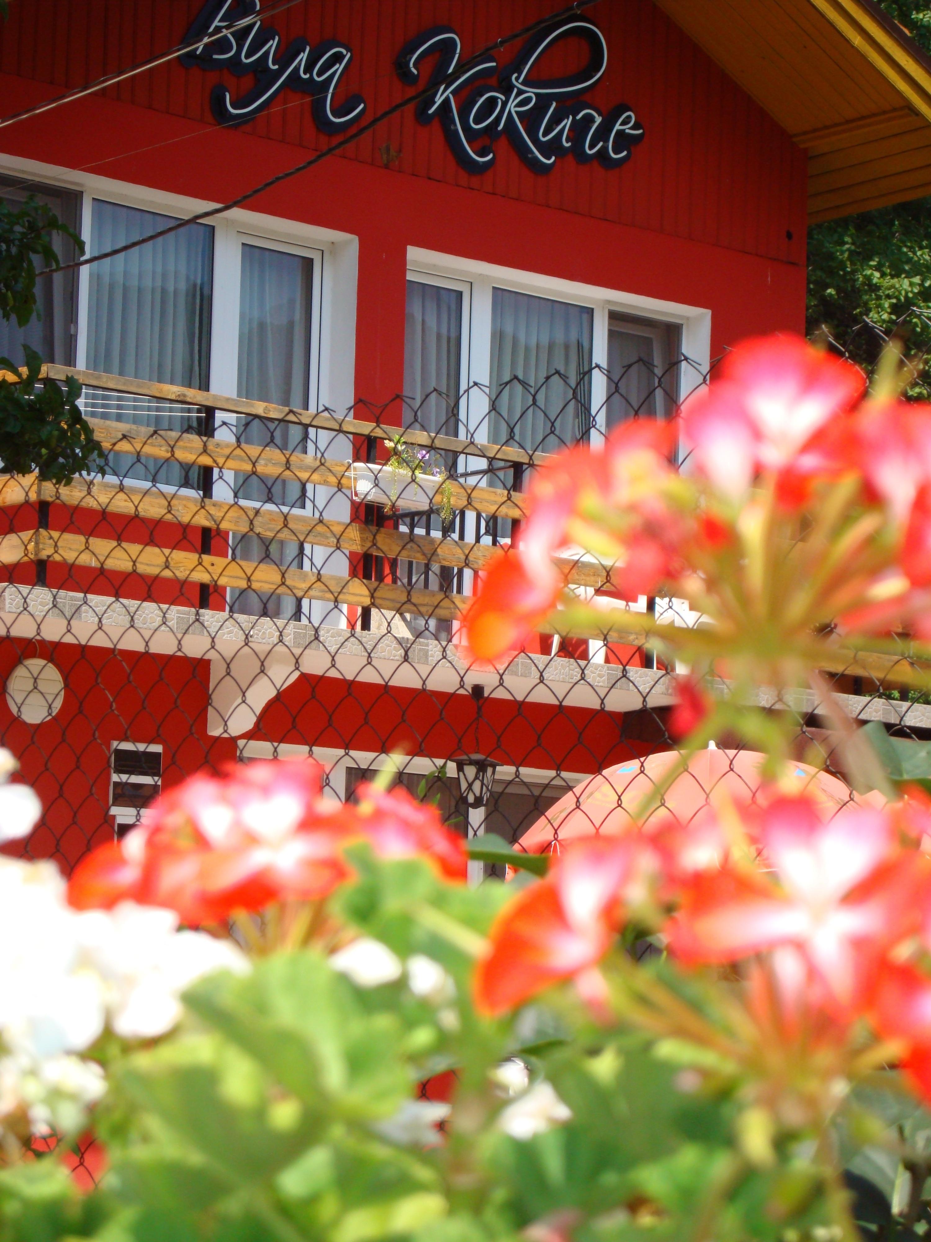 2.Изглед с цветята