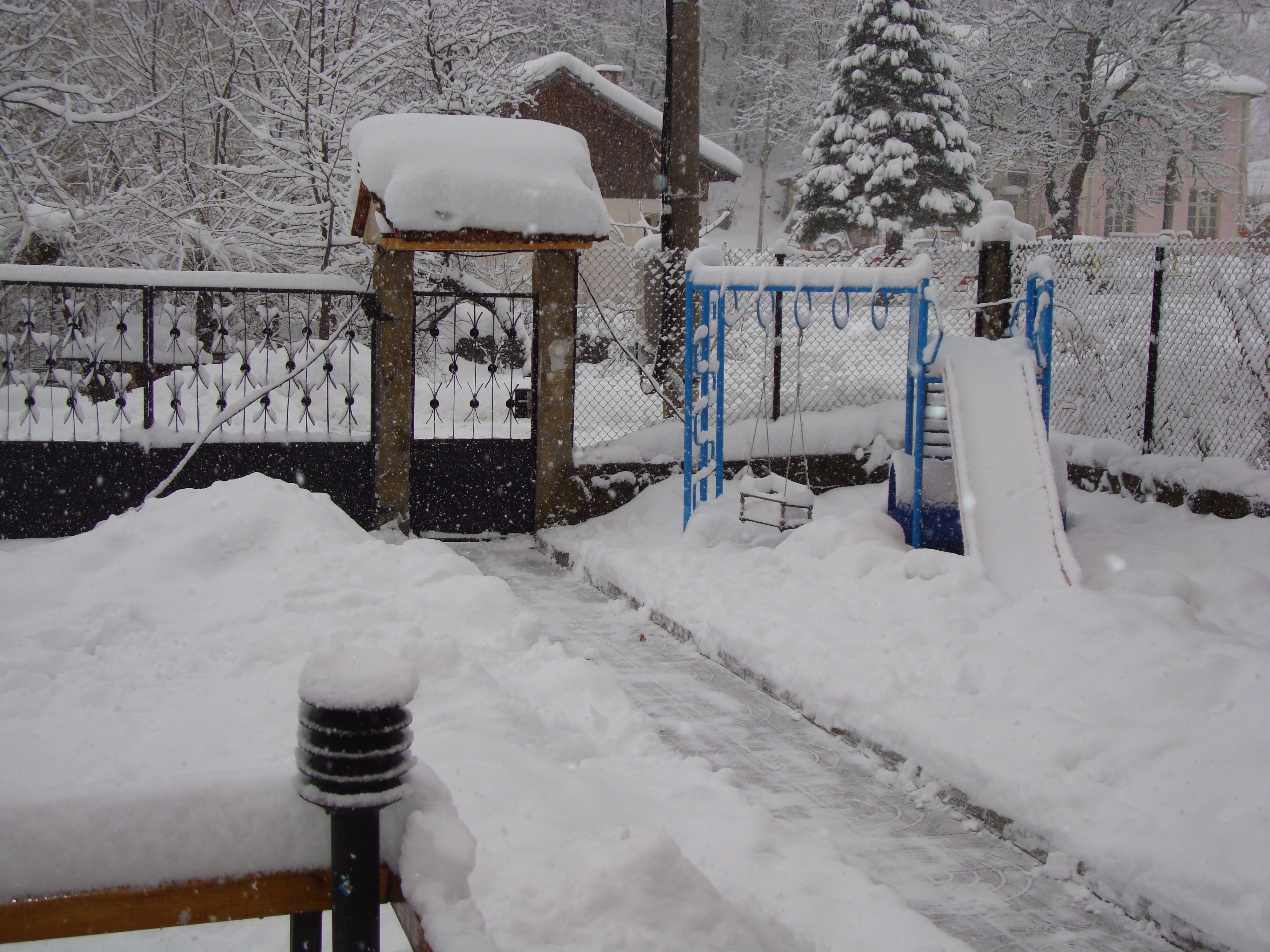 5.Зима в градината